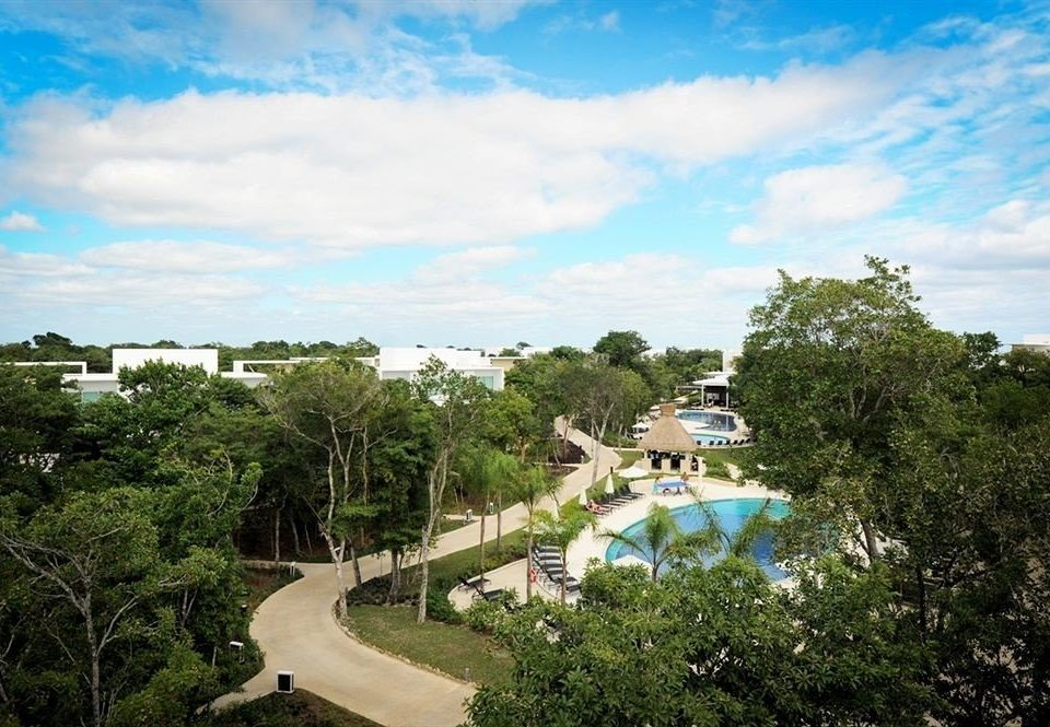 tree sky Resort Sea Beach park bushes Garden