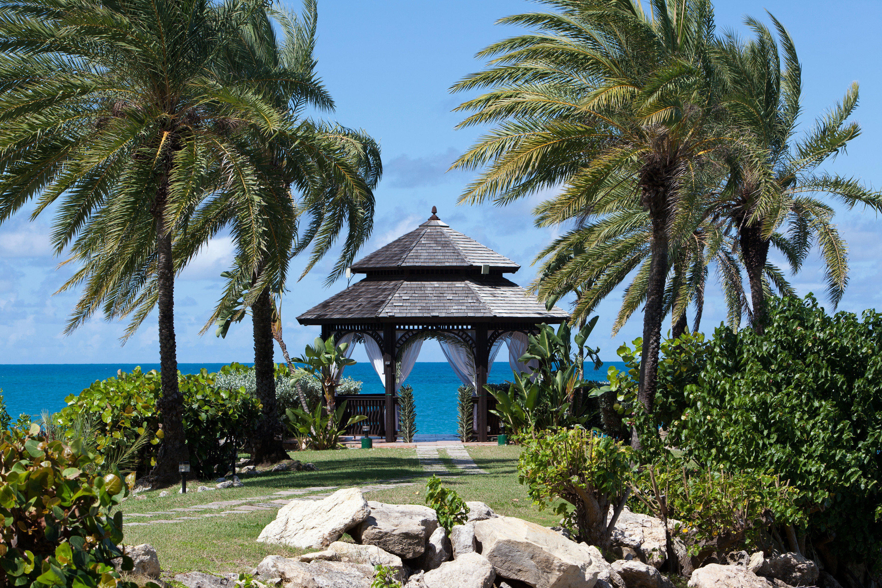 tree sky palm rock Resort botany Garden Beach arecales plant Villa tropics palm family Sea stone bushes surrounded shade