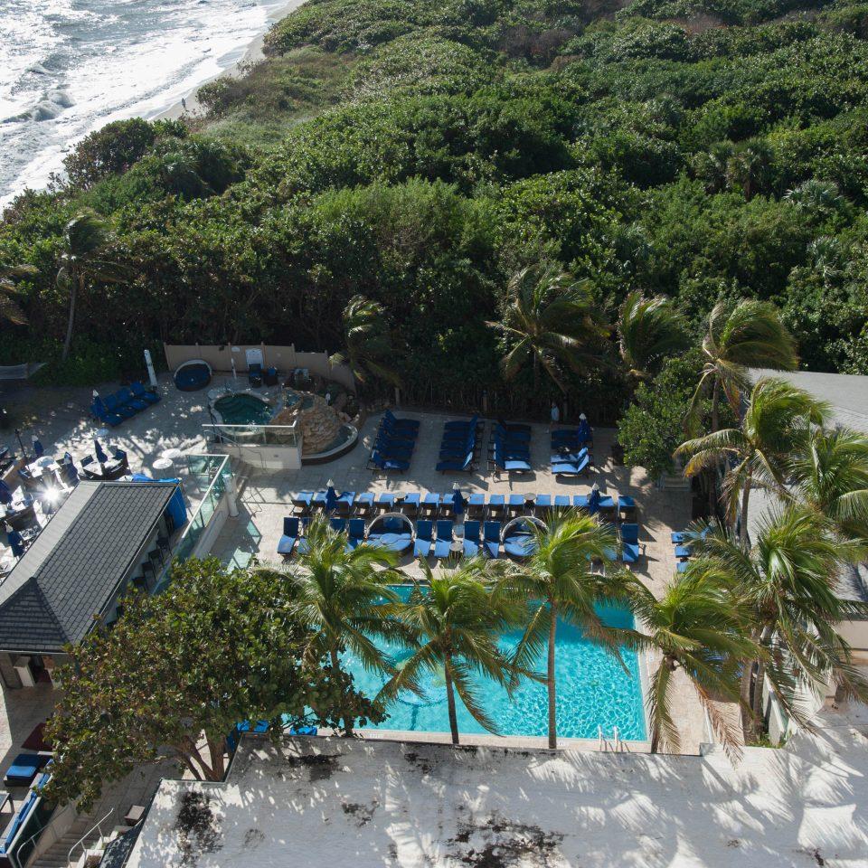 tree Resort swimming pool Beach Water park marina Garden