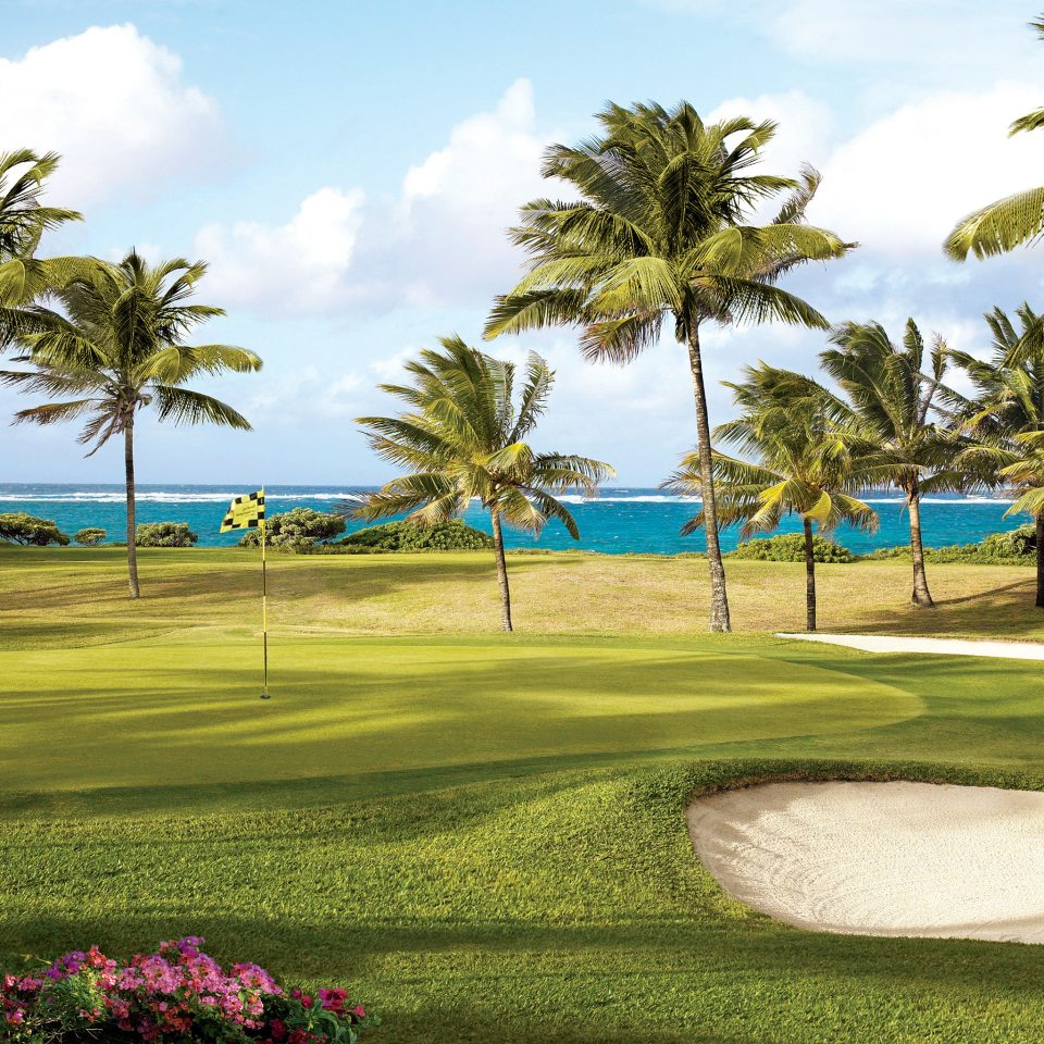 Beach Golf Honeymoon Island Luxury Outdoor Activities Romance Romantic Sport Tropical Waterfront grass tree palm sky structure plant sport venue golf course golf club arecales outdoor recreation sports recreation lawn Resort shade