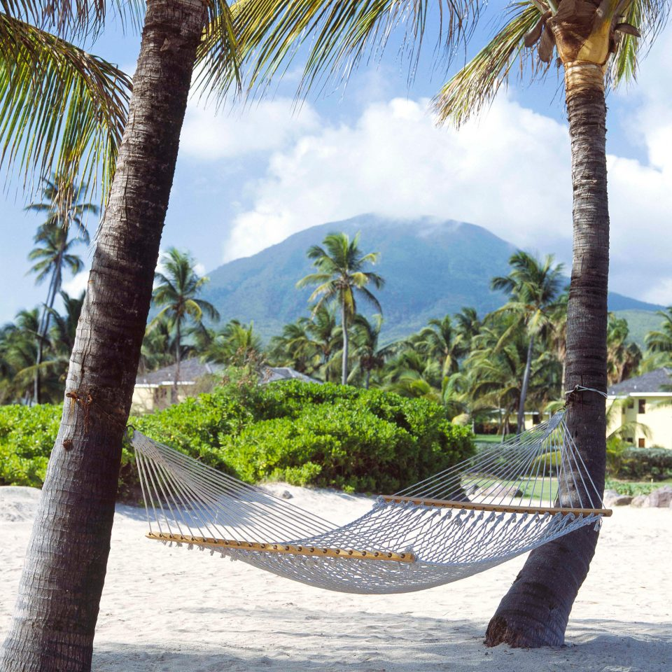 Grounds Hotels Islands Luxury Luxury Travel Mountains Scenic views Trip Ideas Tropical tree sky ground Beach palm hammock arecales tropics palm family plant Resort walkway Sea caribbean trunk