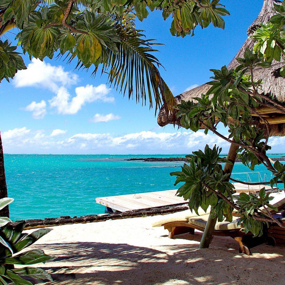 tree sky water palm caribbean plant Beach Resort tropics arecales Ocean Sea palm family Jungle Lagoon Island sunny lined shade shore overlooking sandy