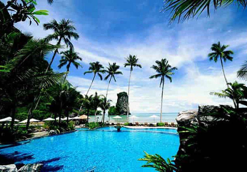 tree water palm caribbean property Resort Beach Pool swimming pool arecales tropics plant Lagoon resort town Jungle Island Sea Lake palm family condominium lined swimming surrounded shade