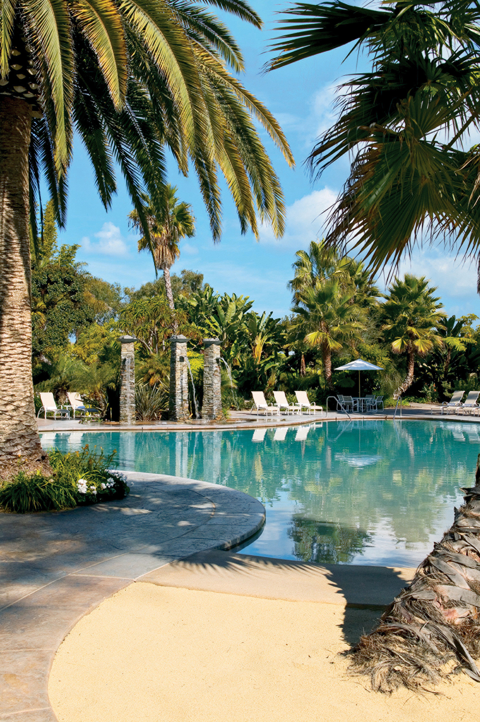 Island Lounge Pool Resort Tropical tree water palm plant swimming pool Beach arecales Sea Ocean tropics palm family Lagoon caribbean surrounded shore