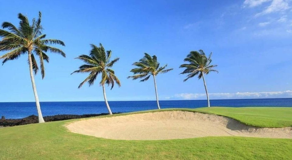 grass sky water palm tree umbrella structure Beach property Nature Ocean sport venue caribbean arecales plant shore golf course golf club palm family Lagoon Resort shade Island