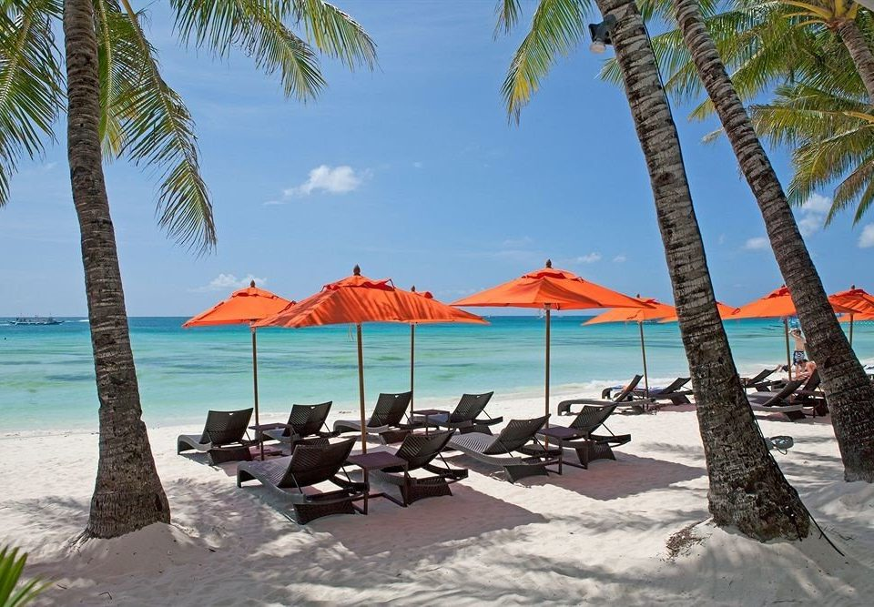 tree sky water umbrella chair Beach leisure lawn palm Resort shore caribbean plant Sea lined arecales Lagoon Island shade sandy day