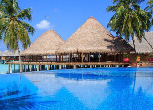 tree water Pool sky Resort swimming swimming pool leisure palm resort town caribbean Beach blue Lagoon Lake pond lined