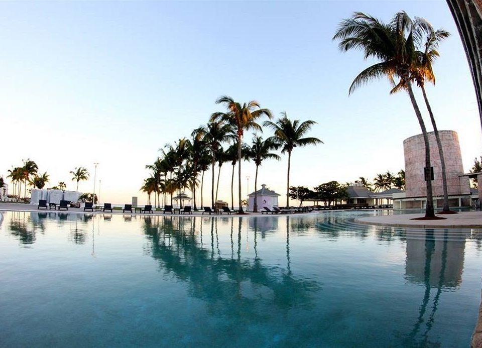 water tree marina Resort arecales Beach Sea dock Lake swimming pool palm palm family Lagoon shore surrounded day