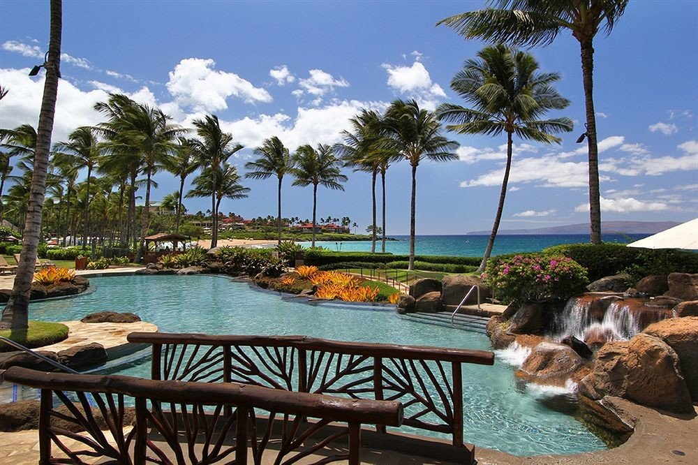 sky tree water leisure swimming pool property Resort caribbean Beach arecales Ocean Sea Villa Lagoon Pool condominium palm overlooking shade shore day
