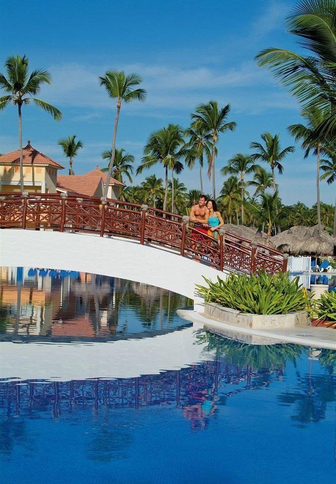 tree water sky swimming pool leisure Resort Pool Sea arecales Ocean Beach Lagoon caribbean tropics Water park marina palm swimming surrounded