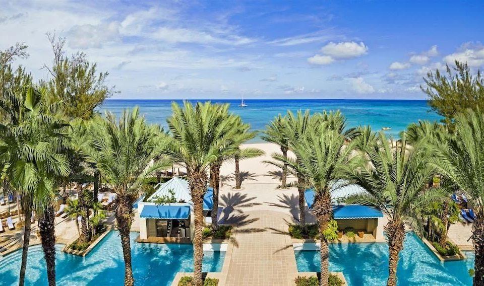 water tree Resort palm leisure swimming pool caribbean Ocean plant Lagoon Water park arecales Beach Pool amusement park shore beautiful shade sandy