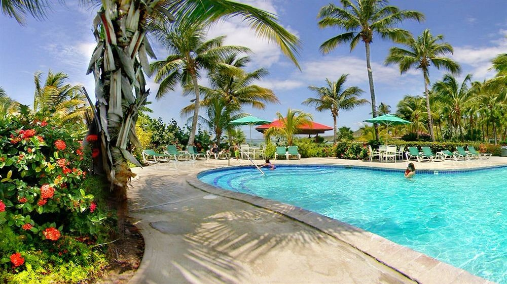 Outdoors Play Pool Resort tree water palm swimming pool leisure caribbean lined swimming arecales tropics Lagoon Beach Sea Villa surrounded