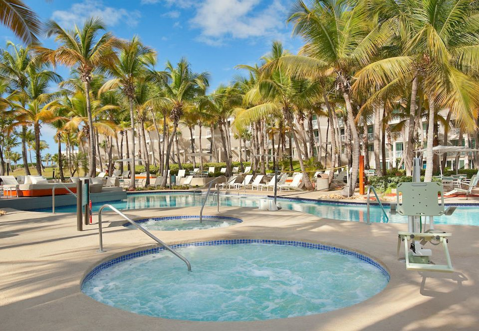 tree Resort sky palm swimming pool leisure property Beach Pool caribbean arecales resort town Water park Lagoon marina lined empty swimming