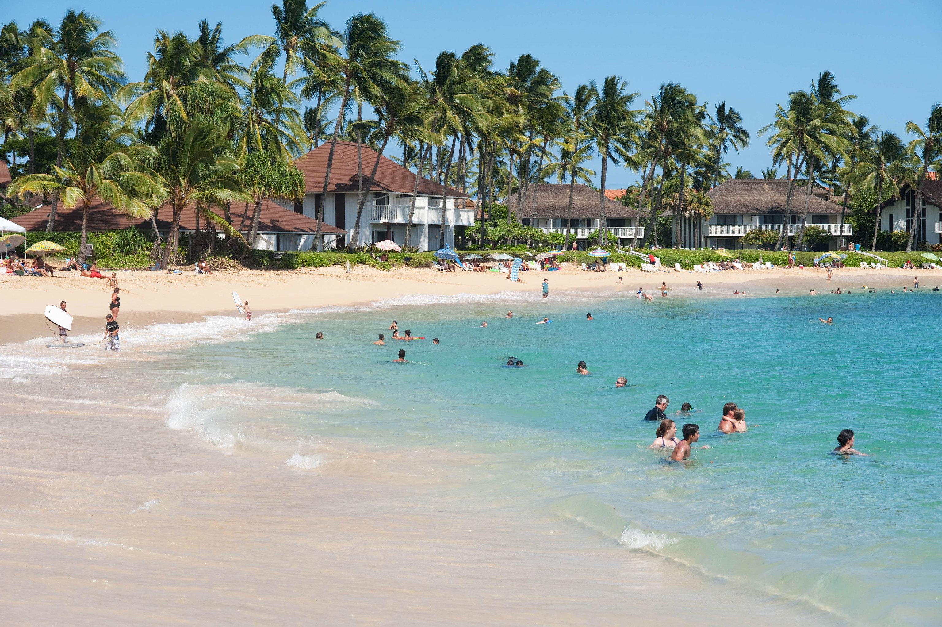tree sky water Beach leisure Sea swimming Sport water sport Resort caribbean Lagoon swimming pool Pool tropics Water park shore palm