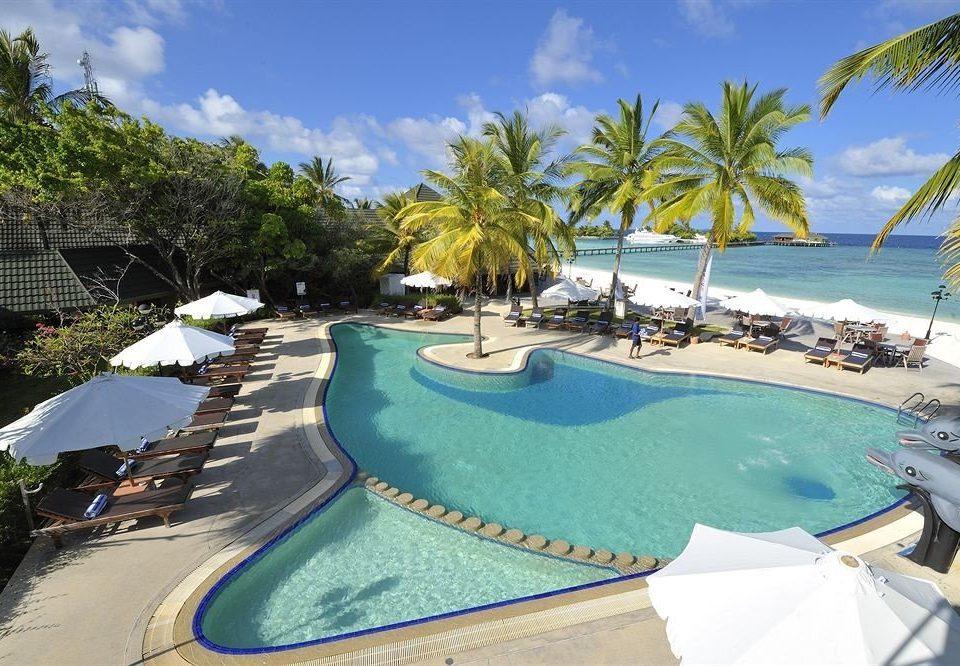 tree sky swimming pool leisure palm Resort property caribbean Water park Beach resort town Villa Lagoon Sea Pool amusement park lined