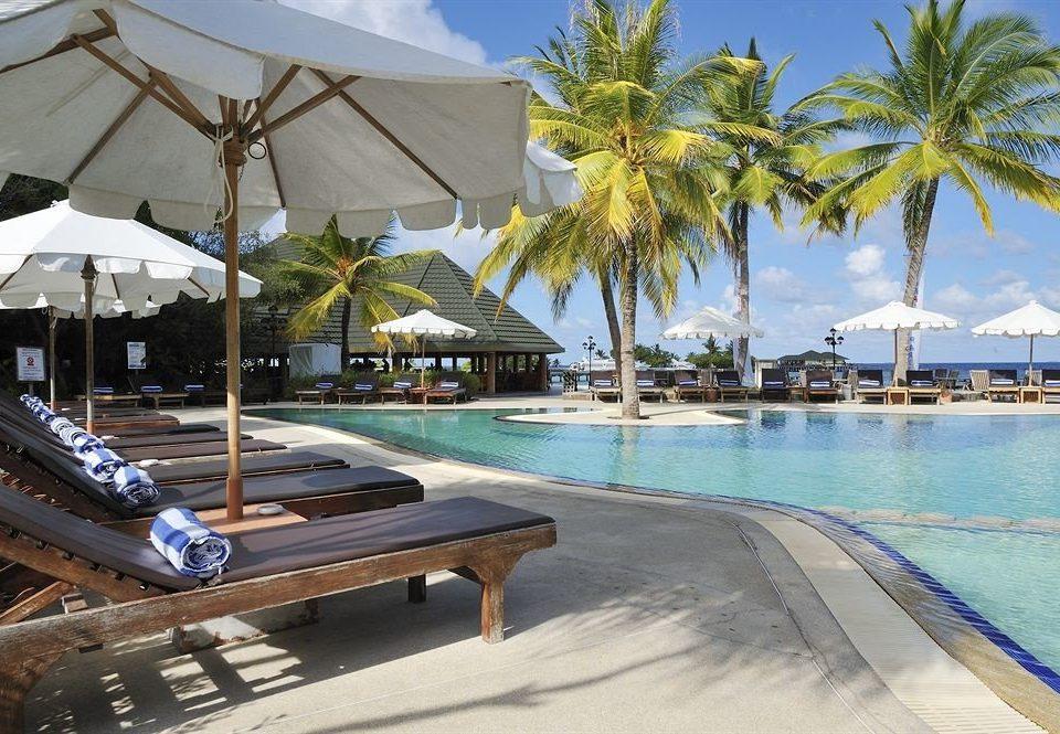 tree leisure swimming pool Beach Resort palm Sea dock marina caribbean Pool walkway arecales Lagoon boardwalk Villa empty lined shore shade