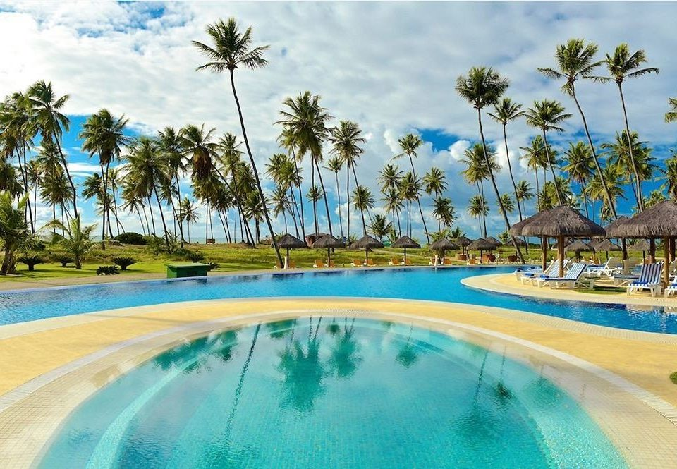 tree sky water palm Pool swimming pool leisure Resort caribbean Water park Lagoon arecales Beach resort town amusement park swimming lined shore