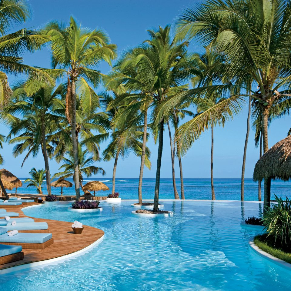 tree water sky palm Resort Pool swimming pool Beach property caribbean plant arecales tropics Sea Lagoon lined palm family swimming blue surrounded