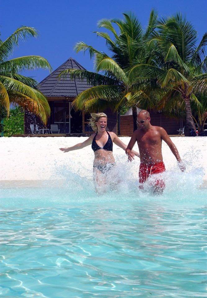 water tree leisure swimming pool water sport Sport caribbean Pool Sea Water park tropics Lagoon Beach swimming