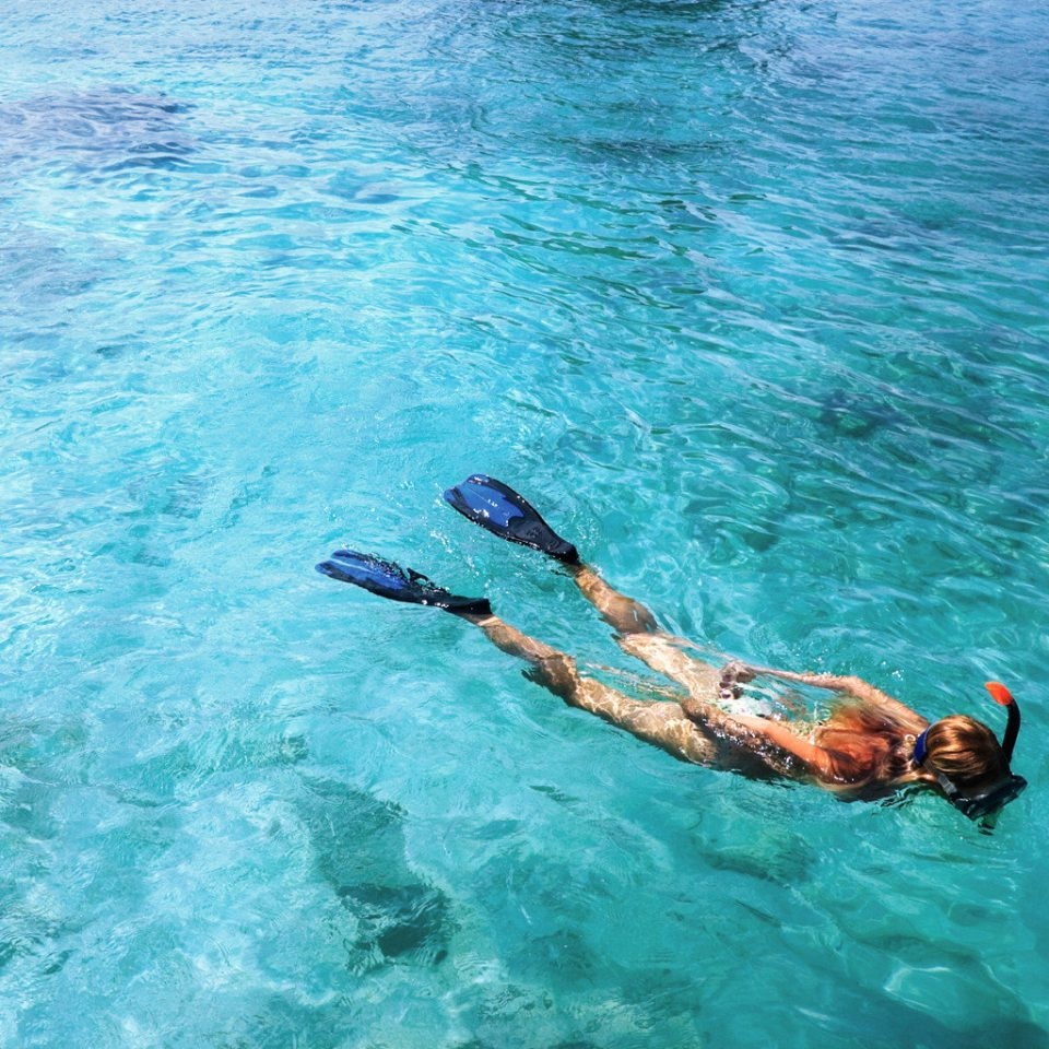 Beach Natural wonders Outdoor Activities Outdoors Play Scenic views Sport water water sport Pool swimming sports outdoor recreation Sea underwater recreation swimming pool diving snorkeling freediving