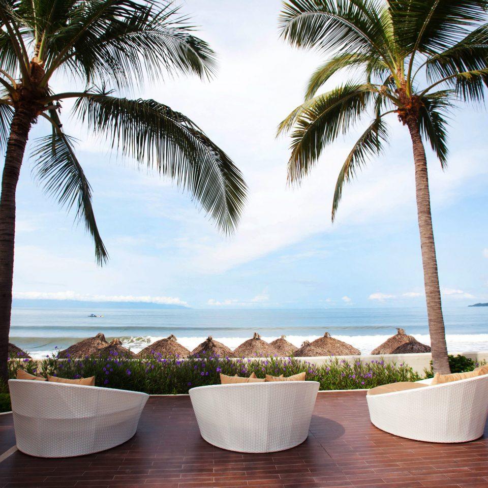 tree palm sky plant water Beach palm family caribbean arecales Ocean Resort Sea Pool tropics lined shade