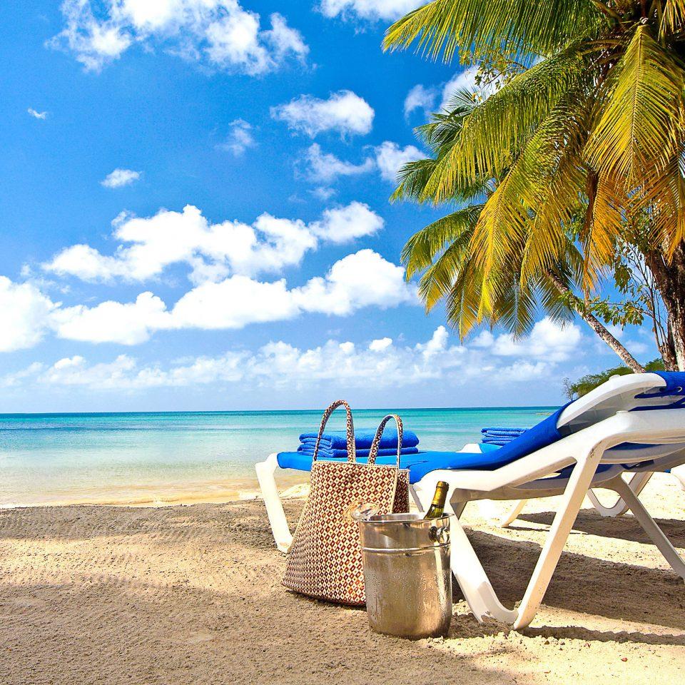 sky Beach ground tree water leisure chair caribbean shore Sea swimming pool Ocean Resort sand tropics lawn sandy blue palm shade