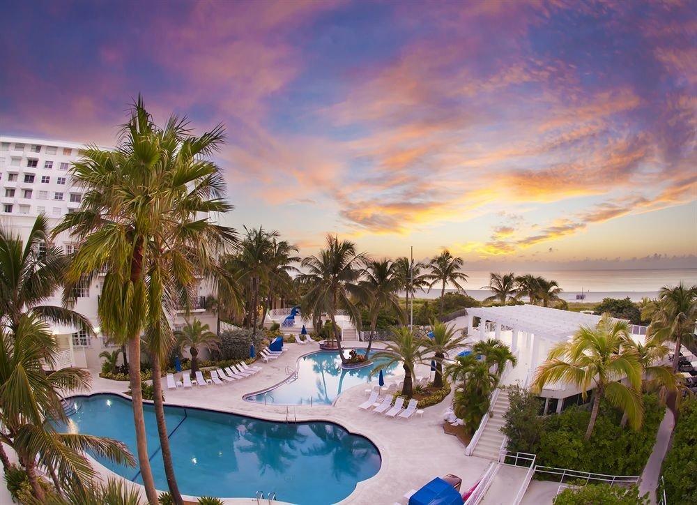 tree Resort Beach palm caribbean Ocean arecales swimming pool Sea plant day