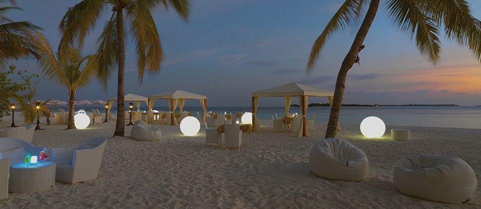 sky tree Beach palm Ocean Resort arecales Sea sand plant sandy