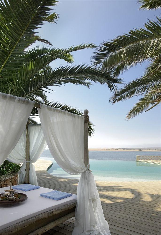 sky tree palm water plant Beach caribbean arecales Ocean Sea palm family tropics lined sandy shade