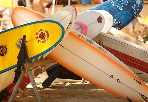 Beach Outdoor Activities Outdoors Resort surfboard surfing equipment and supplies airplane vehicle aircraft wing aviation sports equipment