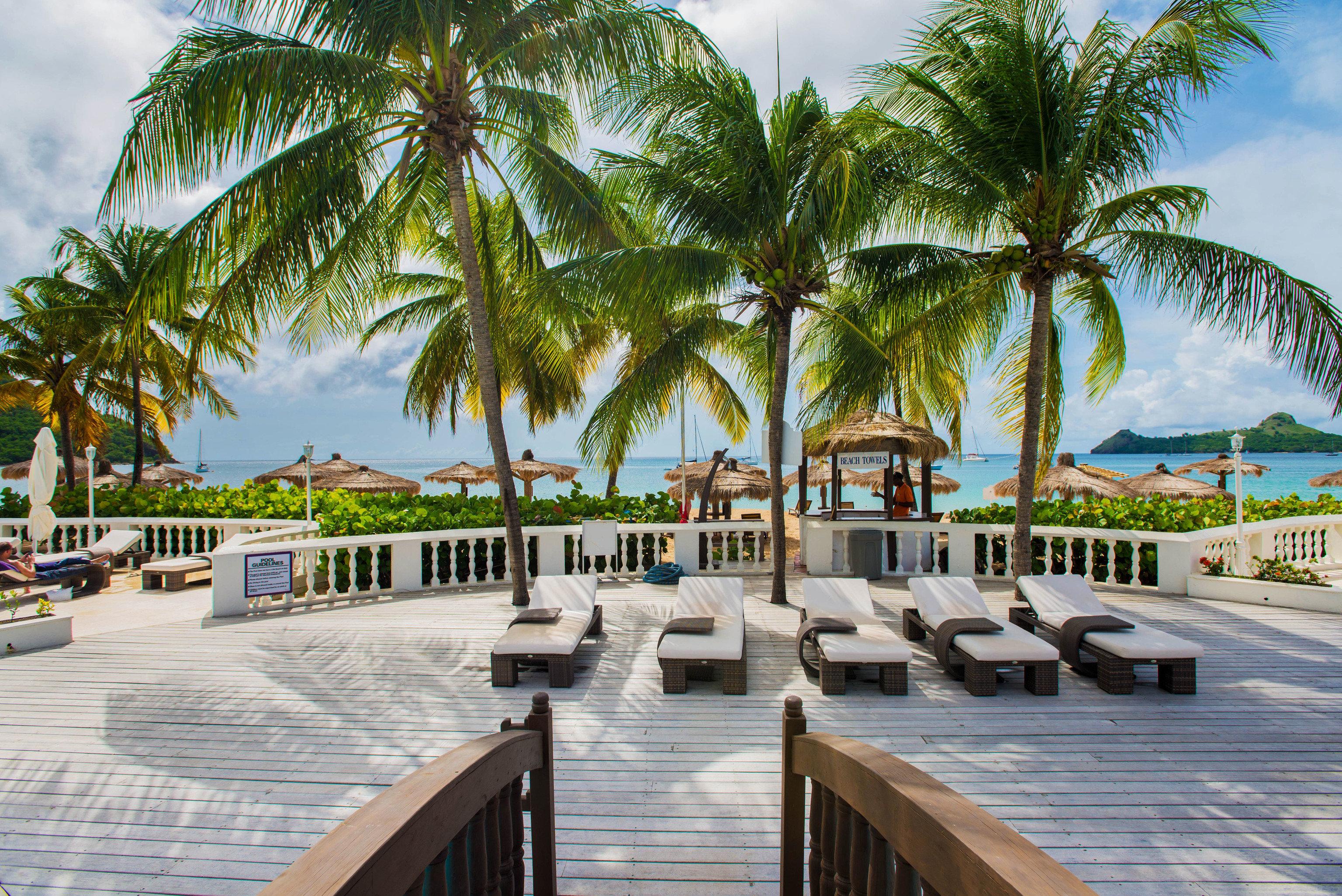 tree palm sky ground Resort swimming pool walkway arecales Beach plant caribbean palm family boardwalk Pool lined