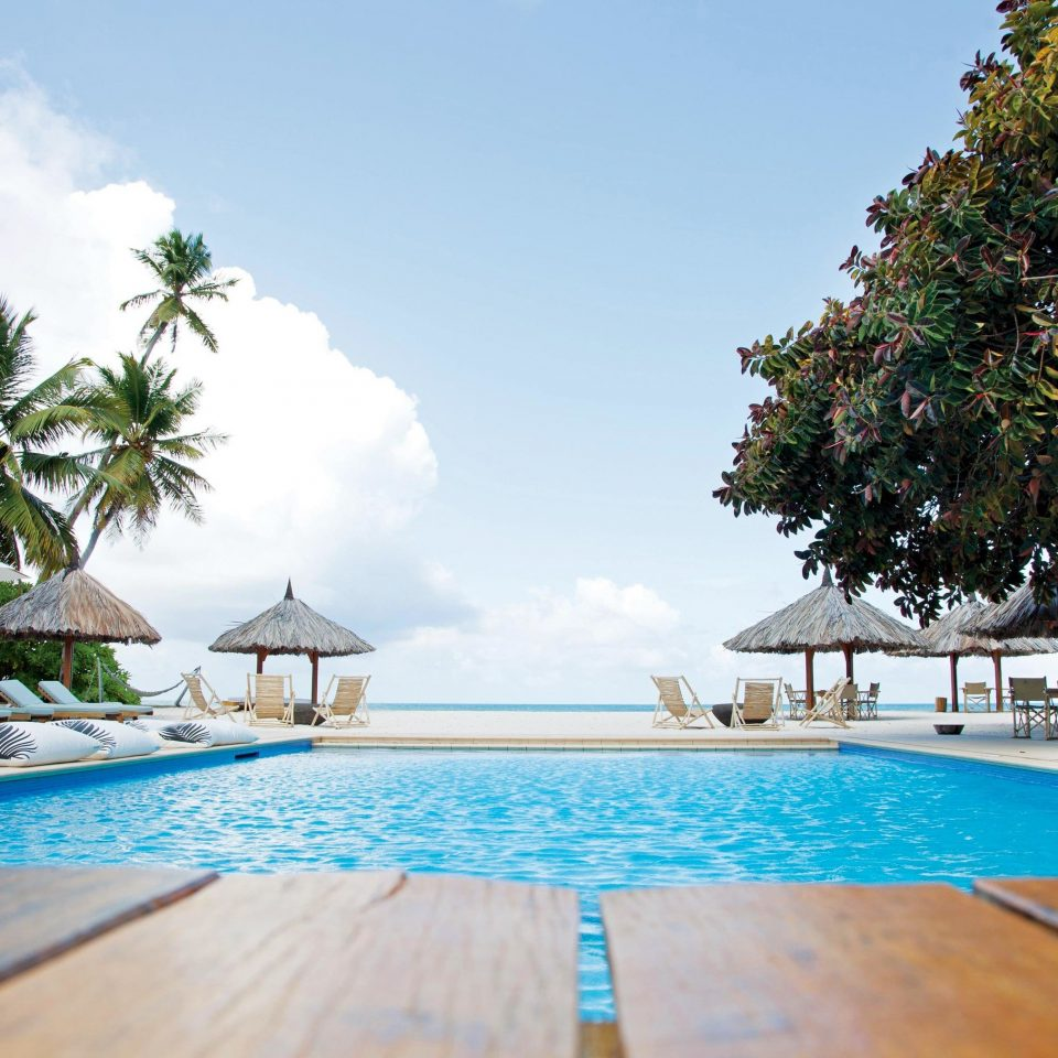 tree water umbrella Pool chair Beach swimming pool leisure property Resort blue caribbean lined swimming Villa resort town Sea shore shade