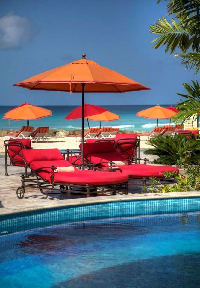 umbrella water chair tree swimming pool leisure Pool Resort lined lawn Sea caribbean Beach row swimming blue palm accessory line