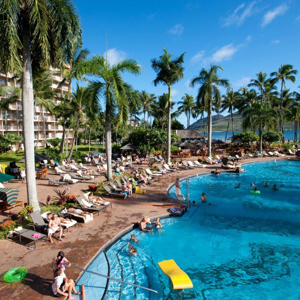 tree sky leisure Resort palm swimming pool Beach Water park Pool amusement park resort town Sea caribbean lawn tropics park lined swimming sandy