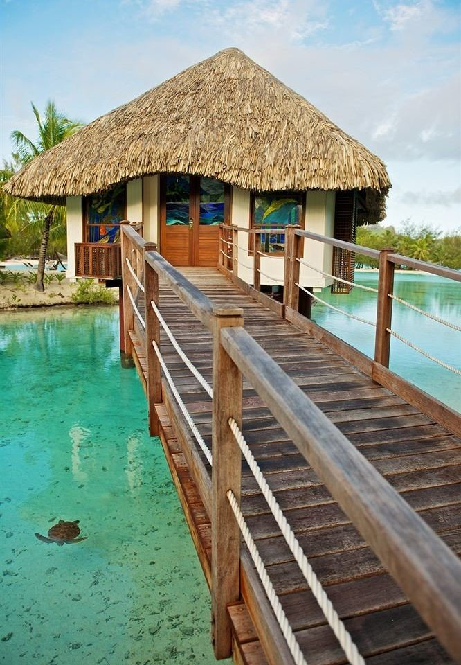 water wooden house Resort walkway Beach Pool swimming pool Sea hut boardwalk cottage surrounded
