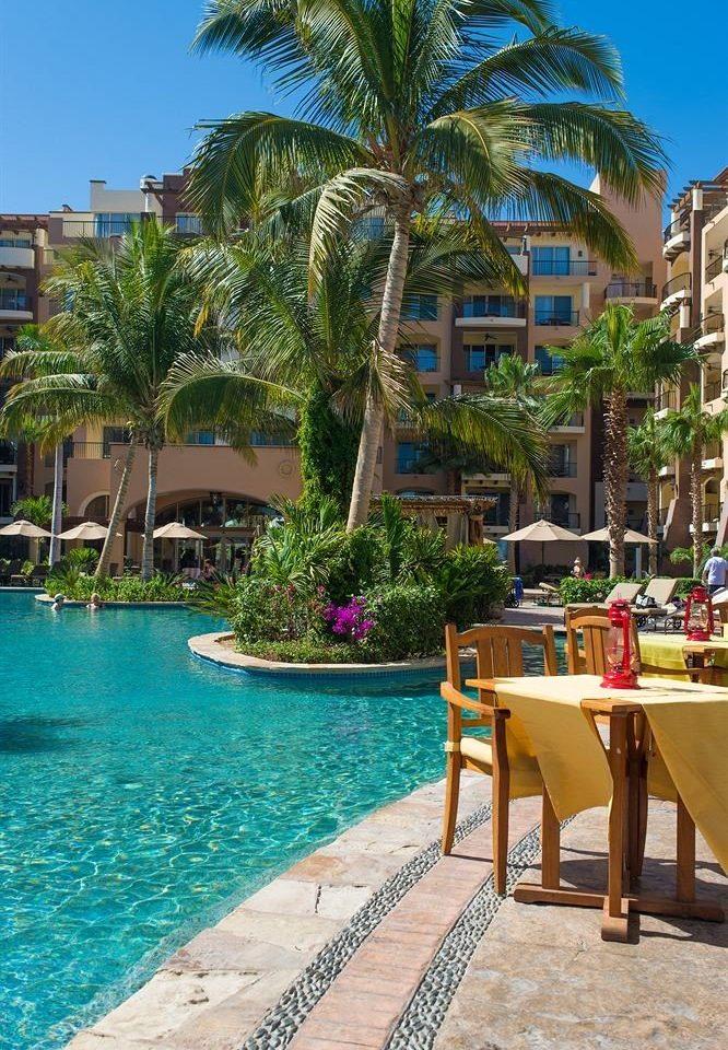 tree leisure property Resort swimming pool caribbean condominium arecales Beach Pool Villa walkway lined