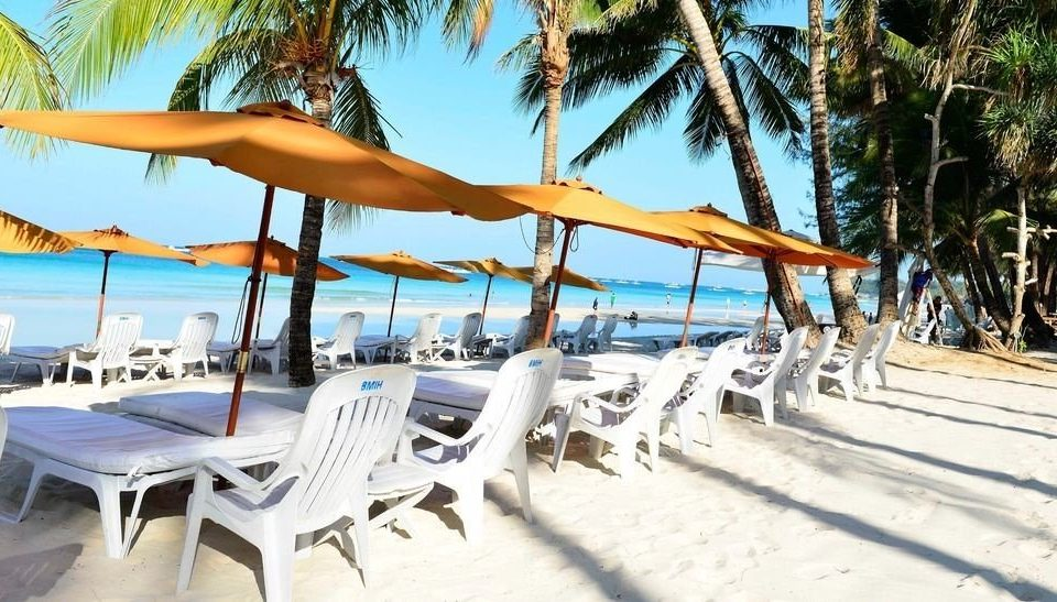 tree chair Beach umbrella leisure palm Resort lawn caribbean plant Villa Pool lined sandy shore shade