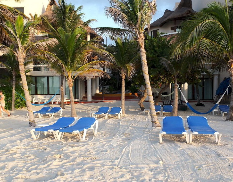 tree umbrella chair Resort Beach property blue palm swimming pool lawn home arecales Pool caribbean Villa walkway backyard shade sandy set