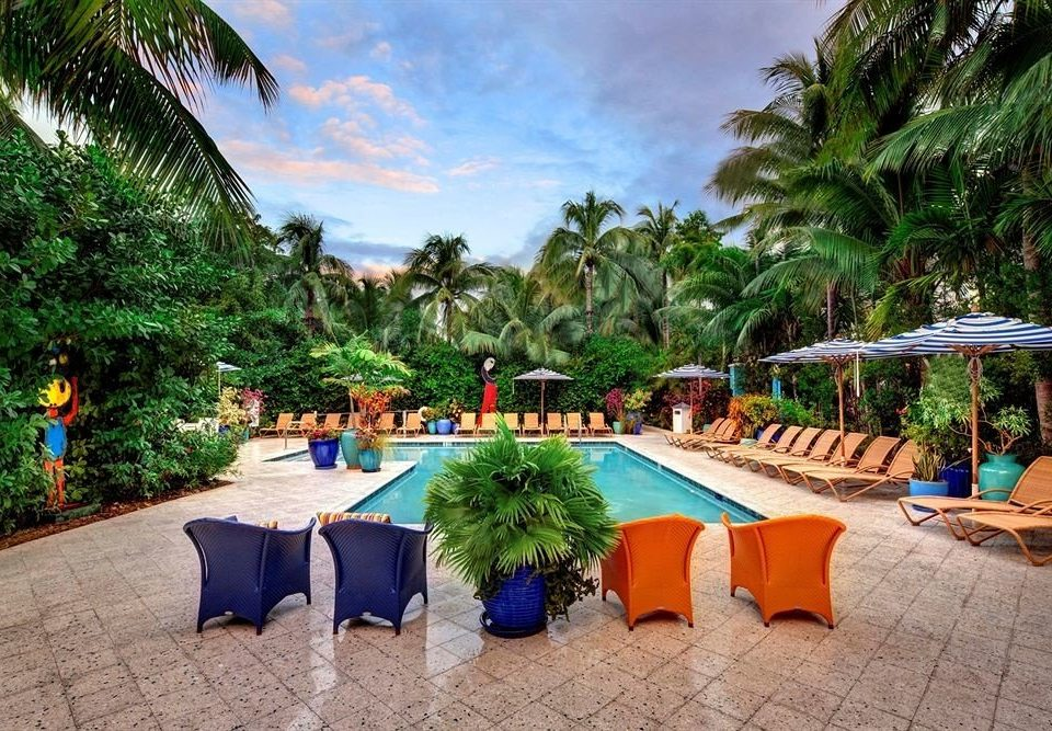 tree ground palm plant Resort leisure property swimming pool caribbean Pool Villa Beach hacienda colorful backyard eco hotel lined