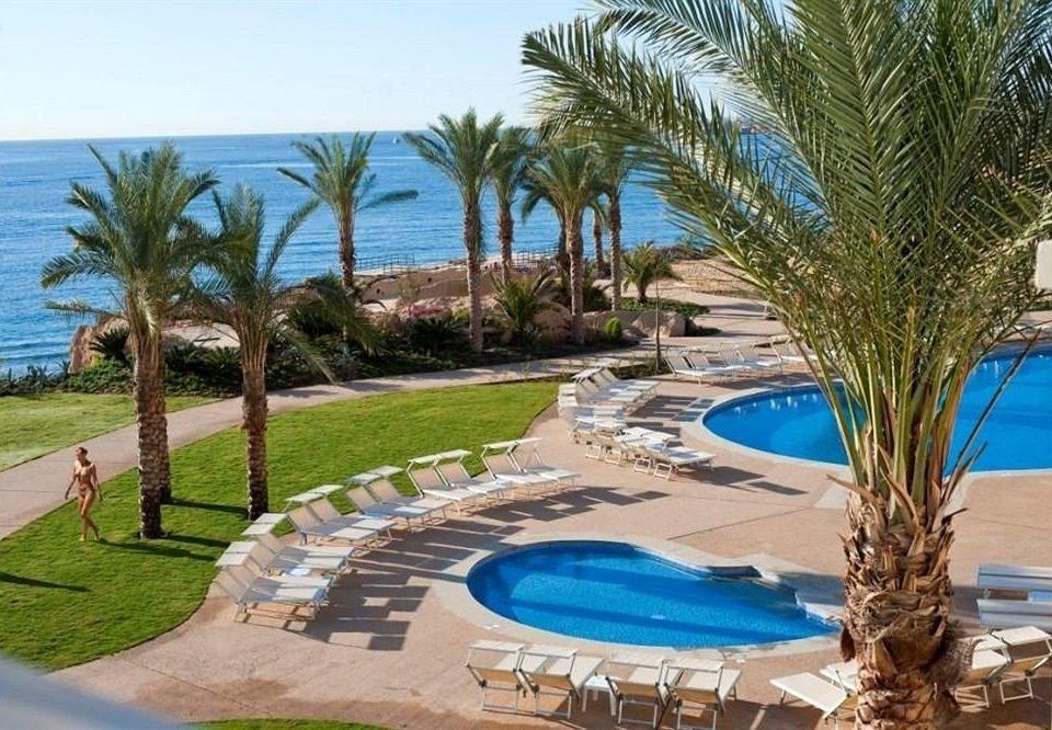 tree grass palm lawn Resort Pool Beach property swimming pool plant leisure Villa condominium arecales caribbean home mansion lined hacienda shore shade sandy swimming
