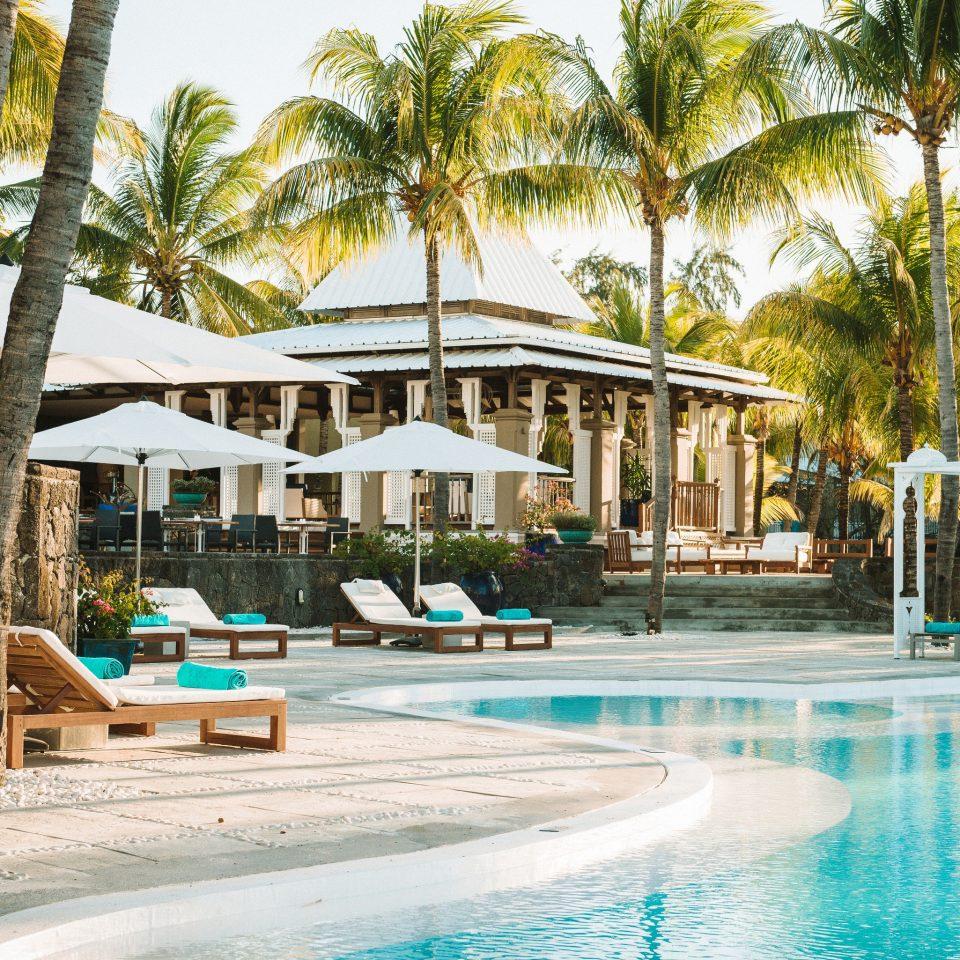 tree Resort leisure swimming pool property Pool resort town Beach caribbean arecales palace Water park shore swimming