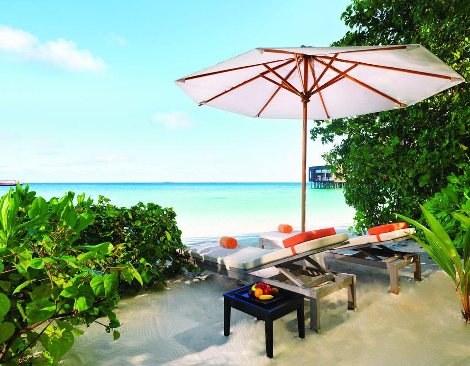 tree sky umbrella leisure accessory caribbean Resort Beach tropics day