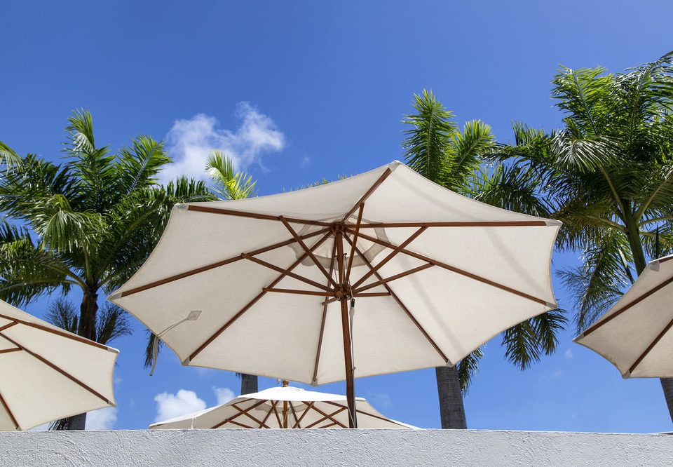 accessory tree sky umbrella Beach Resort shade shore