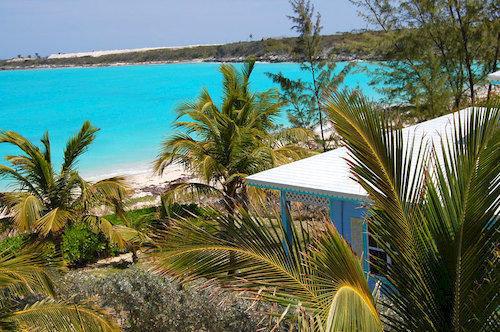 tree palm sky Beach property botany Resort palm family arecales plant tropics caribbean colorful beautiful shade sandy