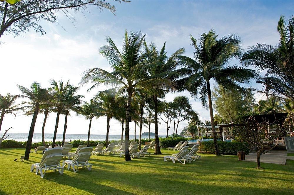 tree grass sky plant palm palm family botany park arecales Resort woody plant tropics Beach lawn grassy lined lush