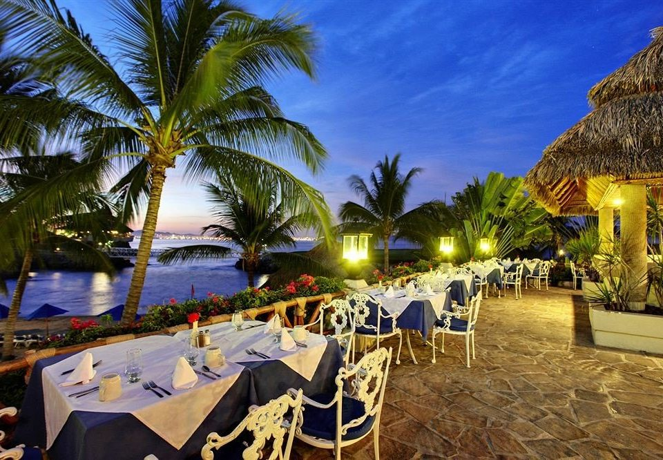tree palm Resort Beach caribbean plant arecales restaurant