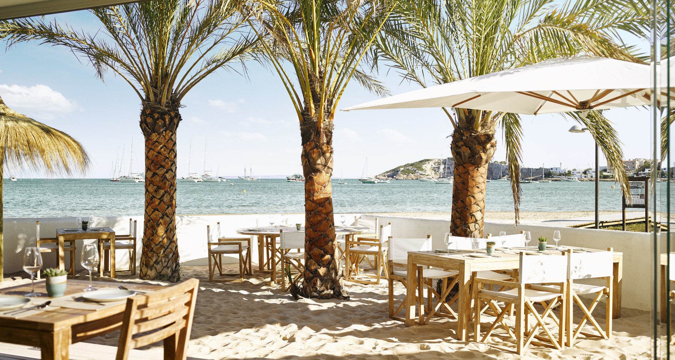 tree chair water Resort restaurant palm tree arecales Beach set dining table
