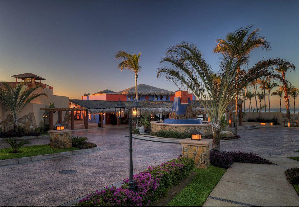 sky grass tree arecales Resort walkway evening Beach distance