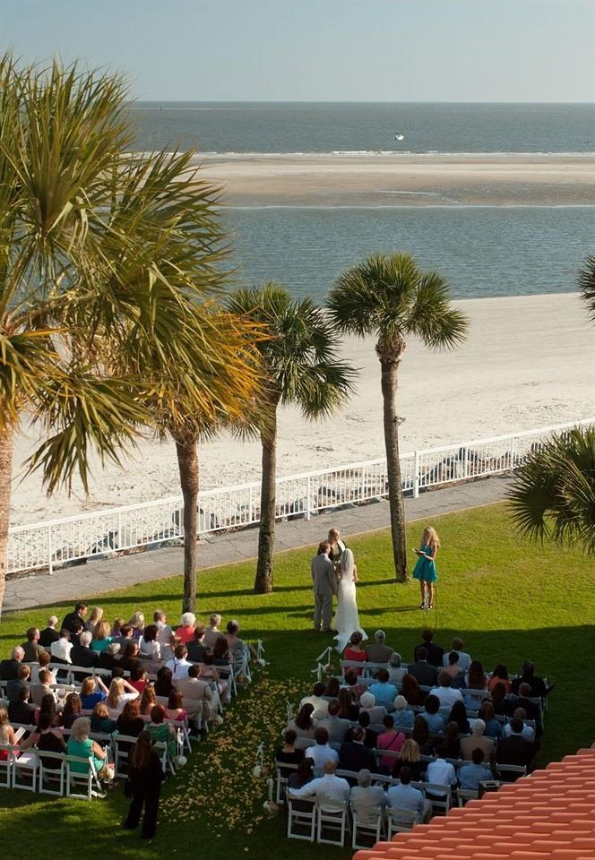 grass sky tree Beach arecales plant palm Resort shore