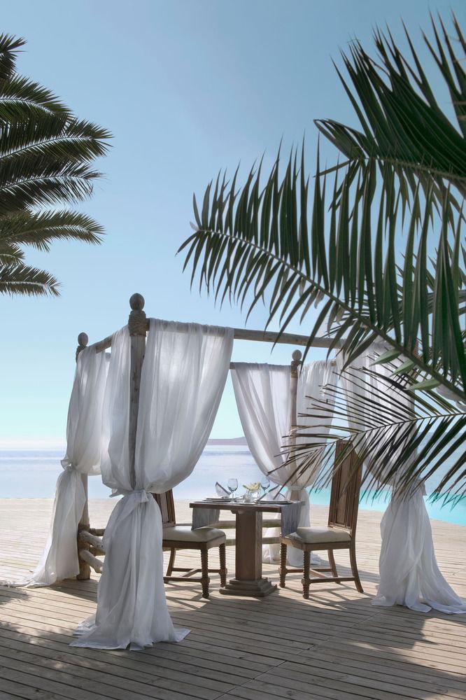ground Beach palm tree plant arecales Resort sandy